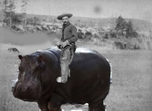 cowboy on Hippo